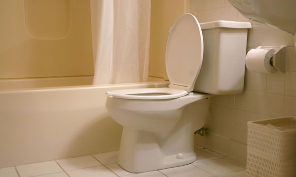 Toilet Installations in Pomona California.